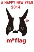 mflag-4